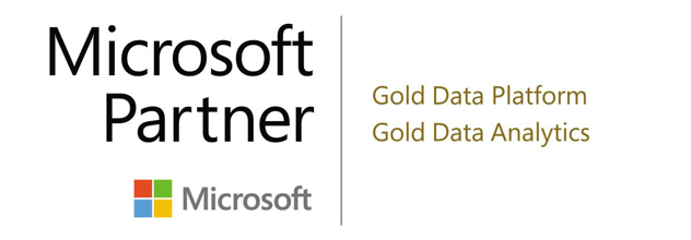 Microsoft Gold Data Partners